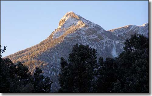 Mount Charleston Wilderness, Nevada