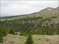 Bartlett Trail in National Wilderness Area