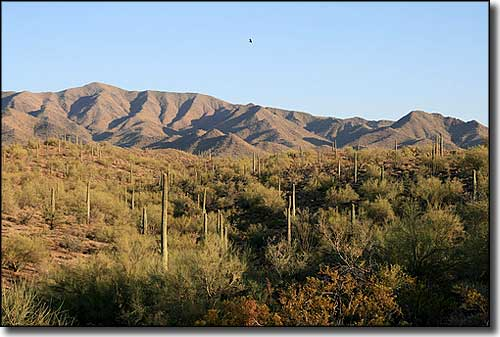 South Maricopa Mountains Wilderness