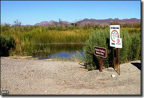 Cibola National Wildlife Refuge