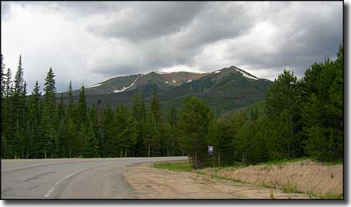 A view in Routt National Forest