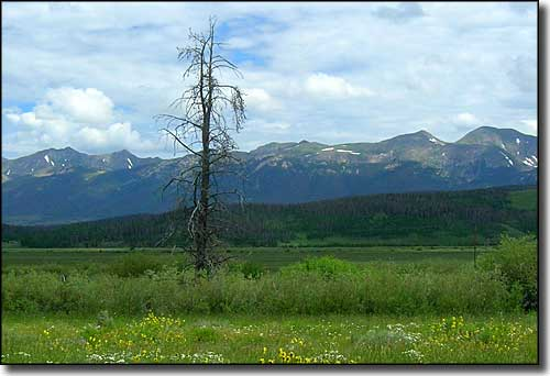 The Medicine Bow Mountains, northern part of State Forest State Park