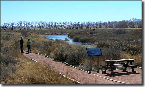 Monte Vista National Wildlife Refuge