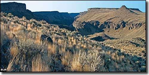 Owyhee Canyonlands in the Owyhee River Wilderness
