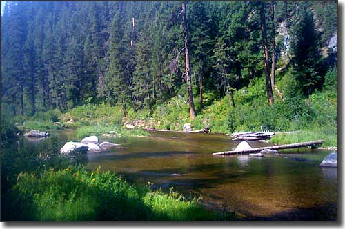 Middle Fork of the Payette River, just outside Crouch, Idaho