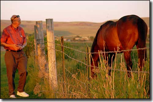 Watching a horse graze near Iona, Idaho