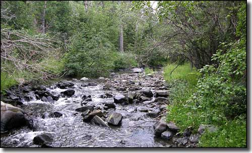 Highwood Creek, near Highwood, Montana