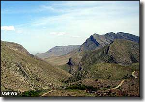 San Andres Mountains, San Andres National Wildlife Refuge