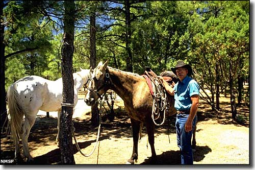 The eastern flanks of the Manzano Mountains are excellent for horseback riding