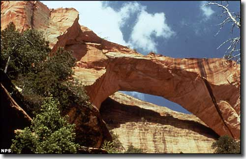 Kolob Arch at Zion National Park