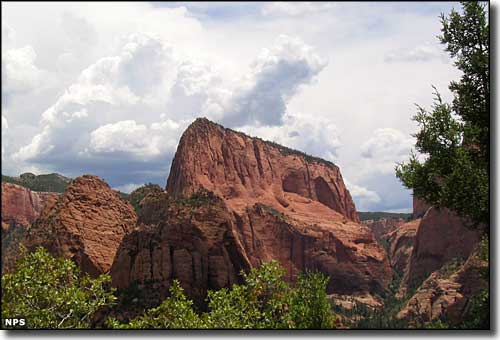 In the Kolob Canyons area