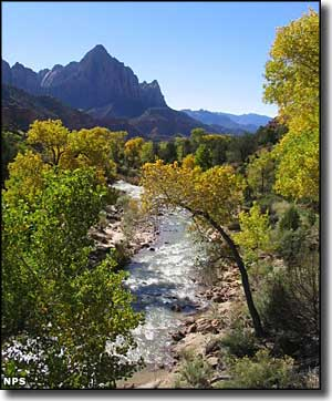 The Virgin River runs beside the Zion Park Scenic Byway