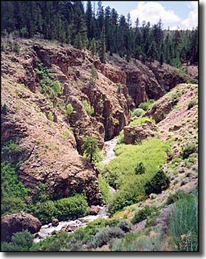 Panguitch Canyon Creek