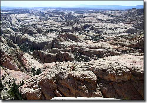 Box-Death Hollow Wilderness, Dixie National Forest, Utah